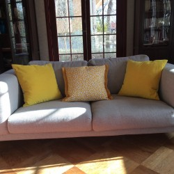 Sunshine cushions